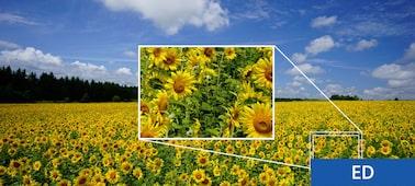 Obrázok – Vario-Tessar® T* FE 16 – 35 mm F4 ZA OSS
