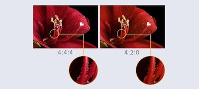 Užite si konzistentnú kvalitu formátu 4K