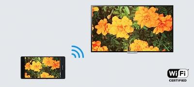 Zrkadlením obrazovky bezdrôtovo zobrazíte obrazovku smartfónu na televízore