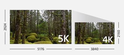Jasné, prirodzené, realistické filmy vrozlíšení 4K